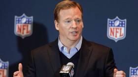 Thank you NFL Commissioner Roger Goodell!